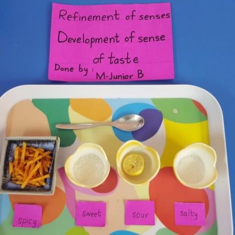 Development of senses by Junior B